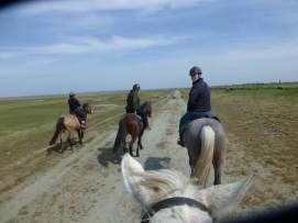 horseriding3