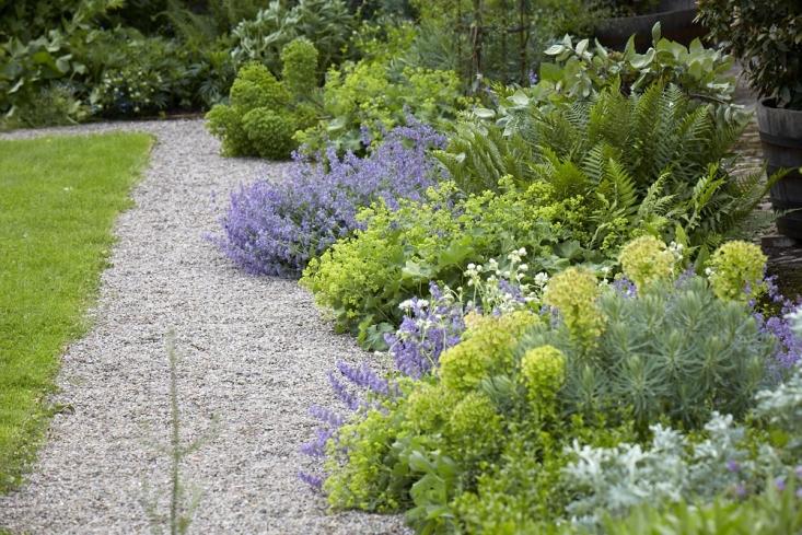 old-lands-gravel-path-alchemilla-ferns-euphorbia-britt-willoughby-dyer-733x489.jpg